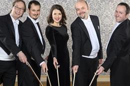 Komorní ansámbl České filharmonie - Náhled