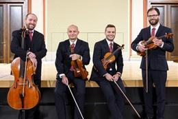 Kvarteto Sukovy síně - Náhled